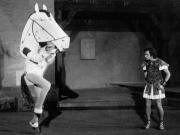 1974_DasPferd