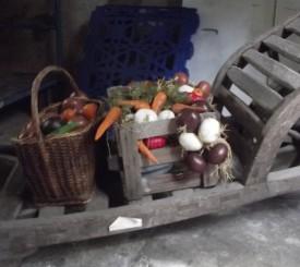 Für die Marktszene steht Gemüse in der Remise bereit